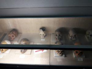 Itenerary Wisata Pendidikan Museum